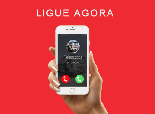 ligue-telesgotos